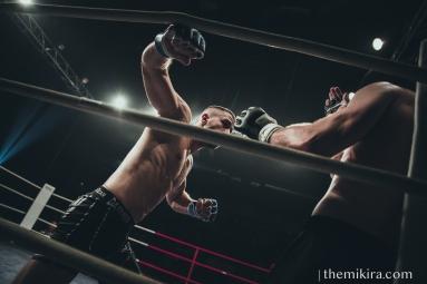 Fight Night100
