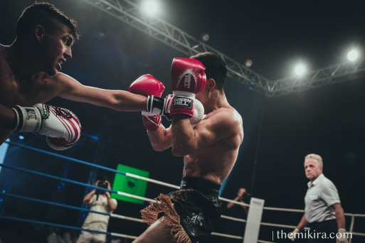 Fight Night109