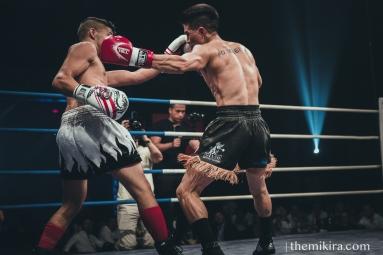 Fight Night111