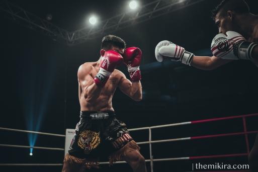 Fight Night112