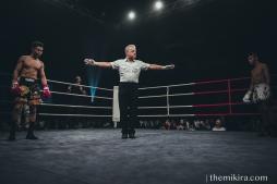 Fight Night113