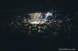 Fight Night114