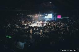 Fight Night115