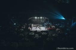 Fight Night116