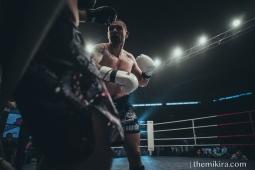 Fight Night141