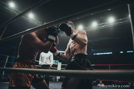 Fight Night160