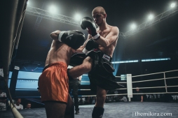 Fight Night161
