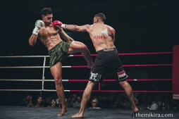 Fight Night17