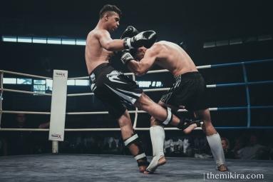 Fight Night181