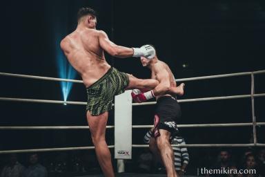 Fight Night22