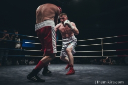 Fight Night39