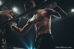 Fight Night48