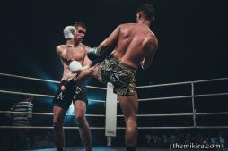 Fight Night50