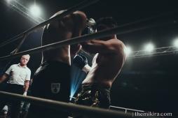 Fight Night52