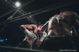 Fight Night6