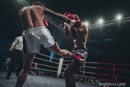 Fight Night82
