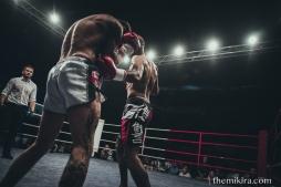 Fight Night83