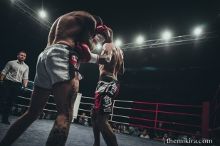 Fight Night83