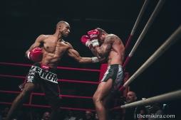 Fight Night84