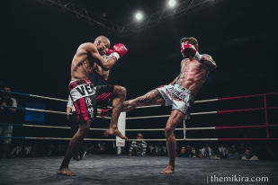 Fight Night85