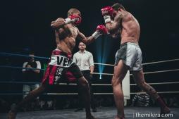 Fight Night86